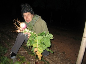 2012-12 - VA IMG_1840 farmhouse garden turnip liz
