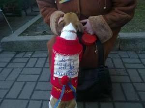 2013-12 UA25 dog protestor