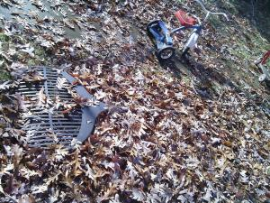 Leaf rake, overcome. APpomattox, VA. November 2014