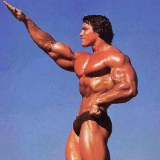 arnold-schwarzenegger-bodybuilding-style-pictrure.jpg