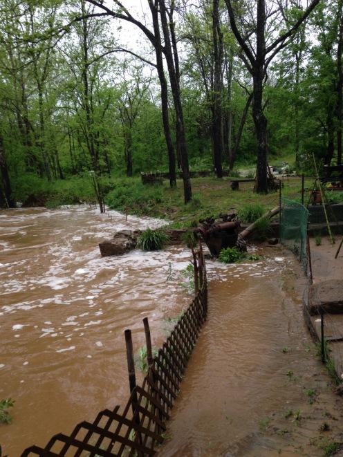 2016-05 IMG_4407IMG_4424 mill garden creek flooded
