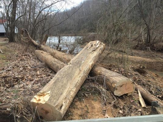 2016-03 IMG_3477 wood left by flood dam (Large)